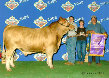 Grand Champion at 2008 Fort Bend County Fair
